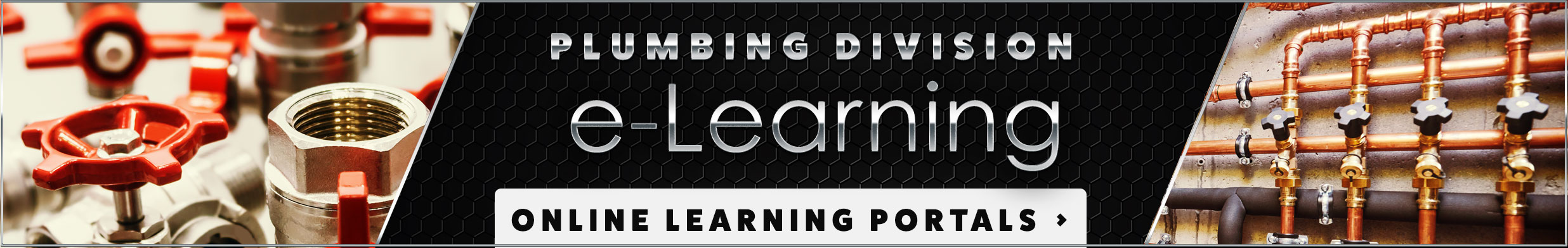 PACE Plumbing Division e-Learning